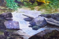 3616 – Beaver Creek on Covered Bridge Trail