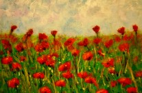 2013-37  Field of Poppies #1
