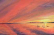 3697 – Muskoka Sunset #5 – Mallards at Sunset