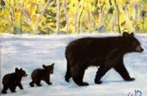 3713 – Bear Patrol